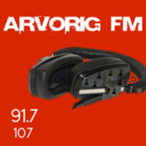 Rádio Arvorig FM