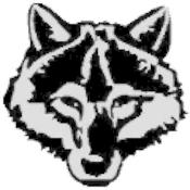 Rádio wolffchen
