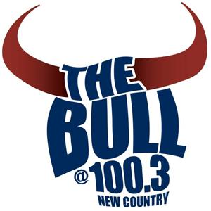 Rádio The Bull 100.3 FM