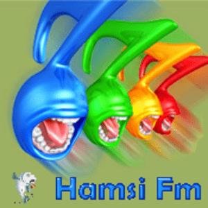 Rádio Hamsi FM
