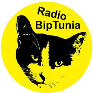 Rádio Radio BipTunia