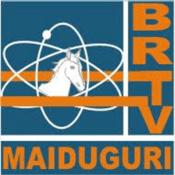 Rádio Borno Fm